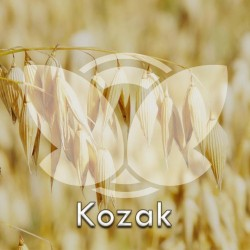 owkozak.jpg