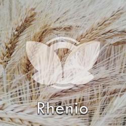 rhenio.jpg