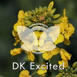 RZEPAK-dk-excited.jpg