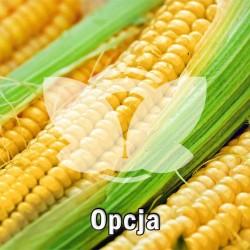 kukurydza_opcja_oseva.jpg
